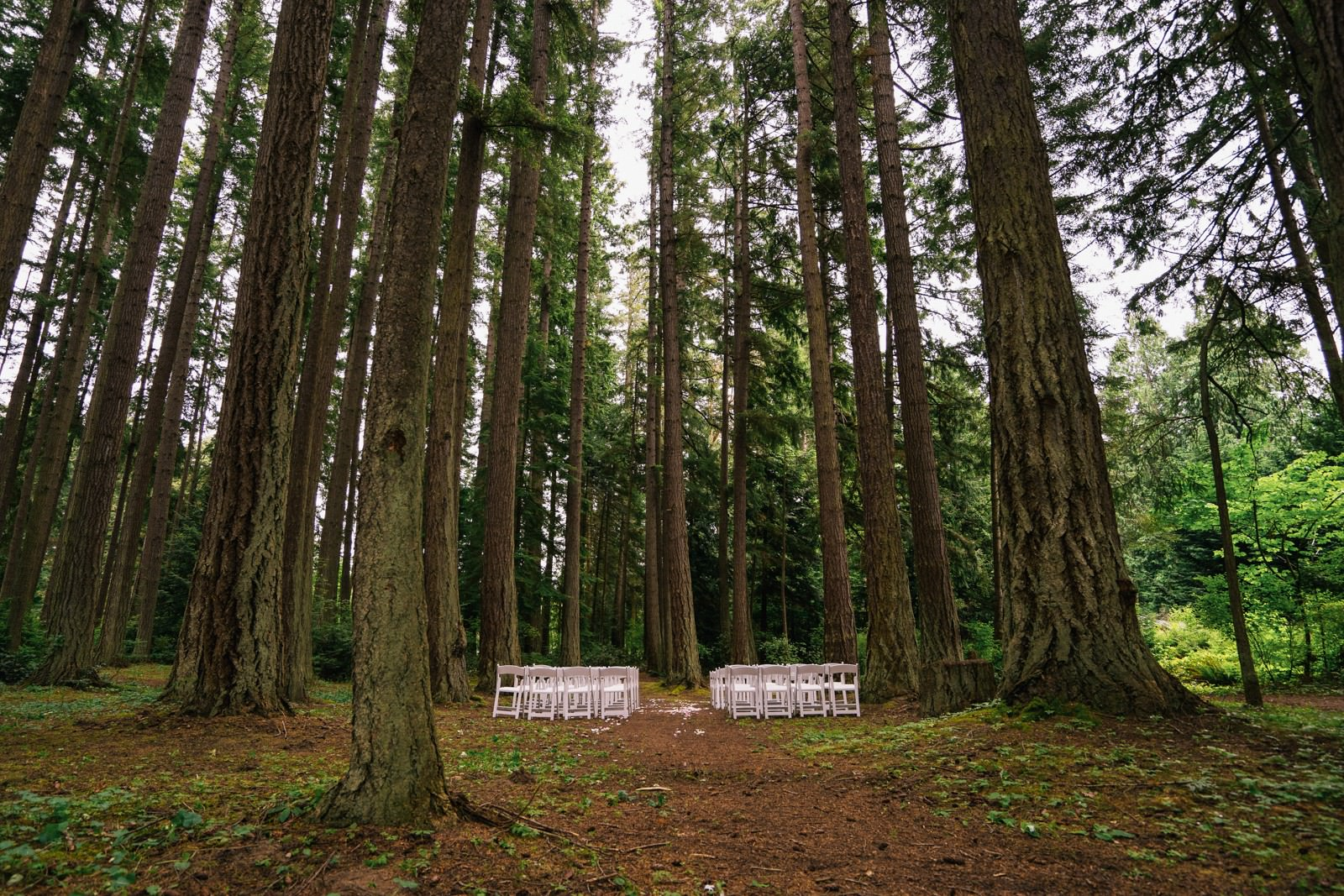 seattle-wedding-photographers-kitsap-memorial-state-park-wedding-1